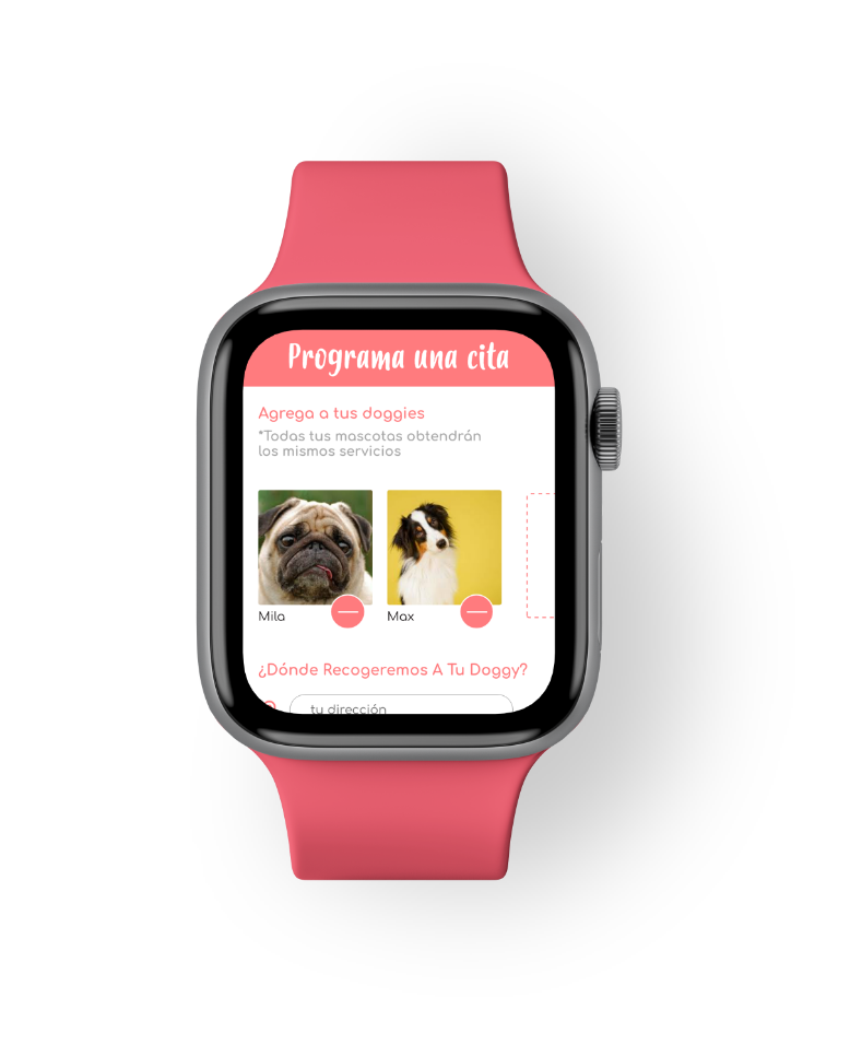 Apple Watch Holiday Pets
